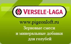 Versele-Laga зерновые смеси купить