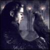 Старонемецкая чайка - последнее сообщение от andrehungaria