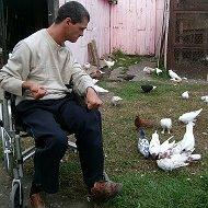 Инвентарь голубеводов и пти... - последнее сообщение от Роман Вербный